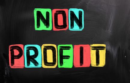 Non Profit Organization