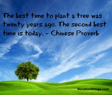Best Time To Plant Tree