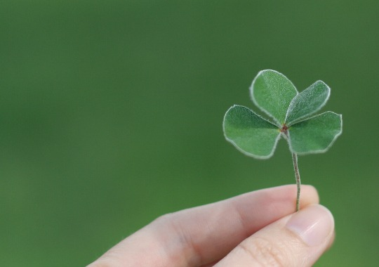 Happenstance and Luck